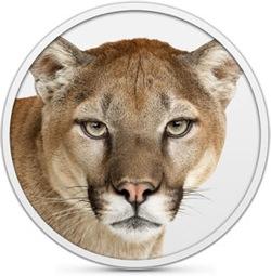 Mountain lion hero