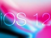 iOS 12 Beta 11 Diyalog Ekranı