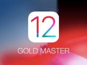 iOS 12 Golden Master GM