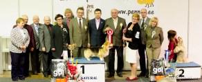 BIS 1: Welsh Corgi Pembroke and the team of Judges