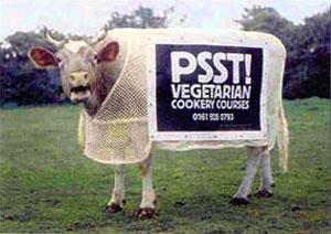 vegetáriánus főzőtanfolyam