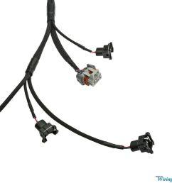 wiring specialties ls1 bmw e36 wiring harness [ 1280 x 996 Pixel ]