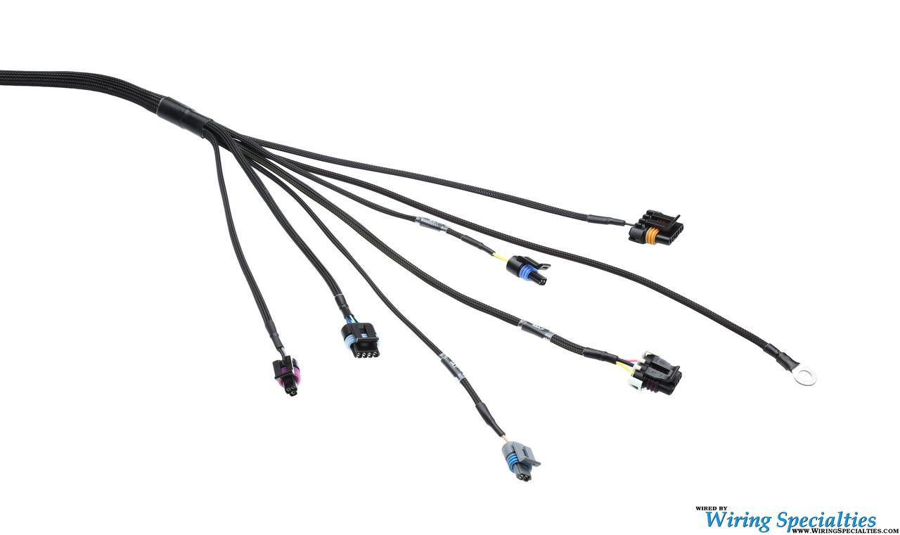 hight resolution of wiring specialties ls1 datsun wiring harness