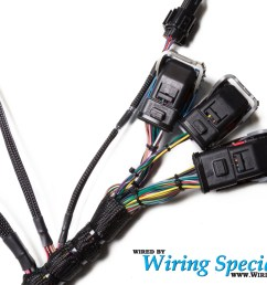 wiring specialties ls2 dbw wiring harness for bmw e46 pro series [ 1280 x 853 Pixel ]