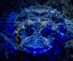 UV Krokodil-nah1-2533