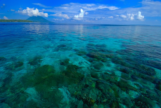 Beyond the Beach - Snorkeling in Bunaken Marine Park | Siladen