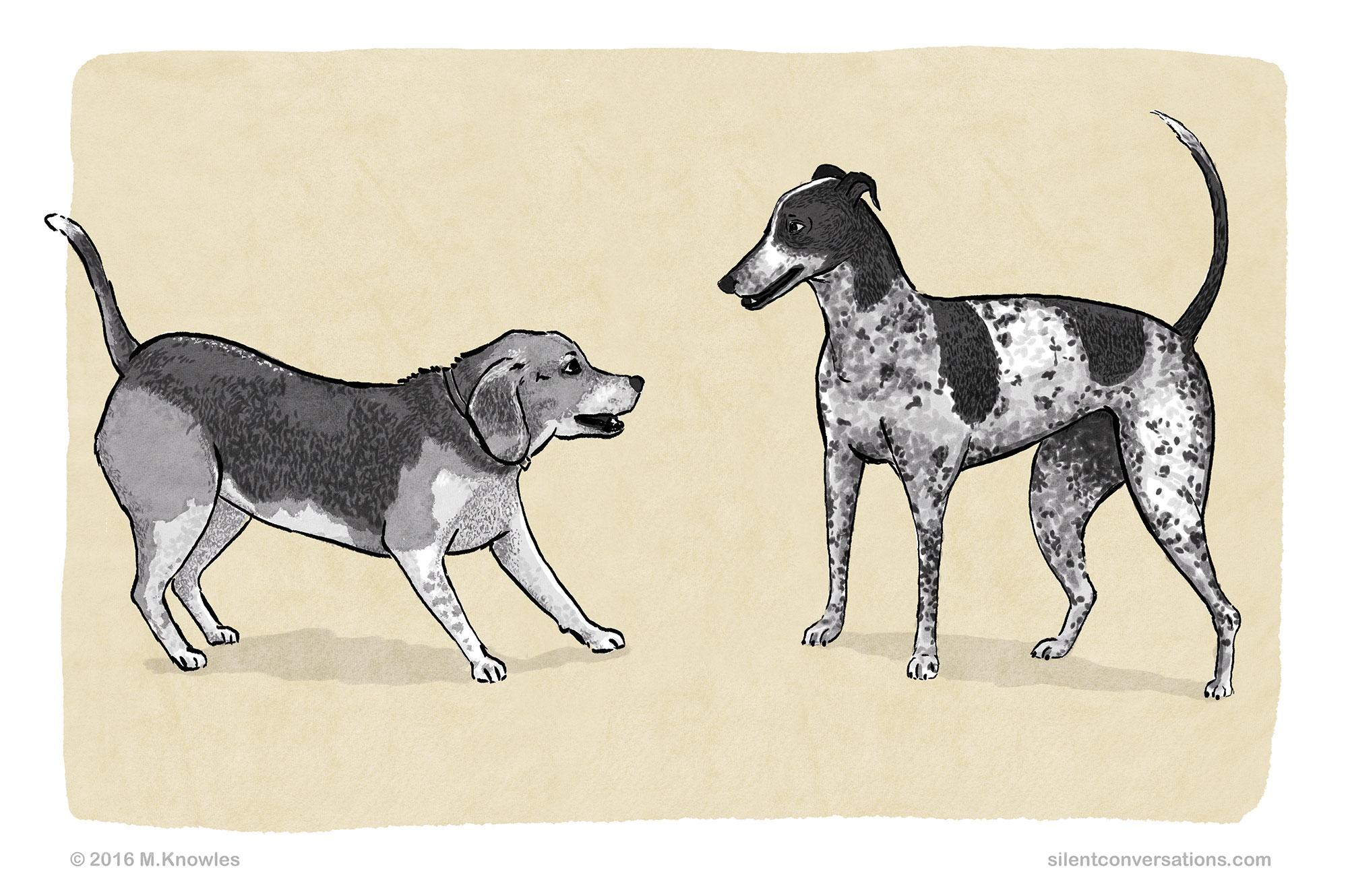 Benefits of learning dog body language