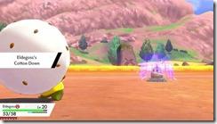 6_05_pokemon_3