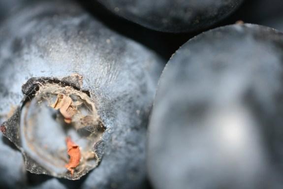 Monatomic blueberry superfood