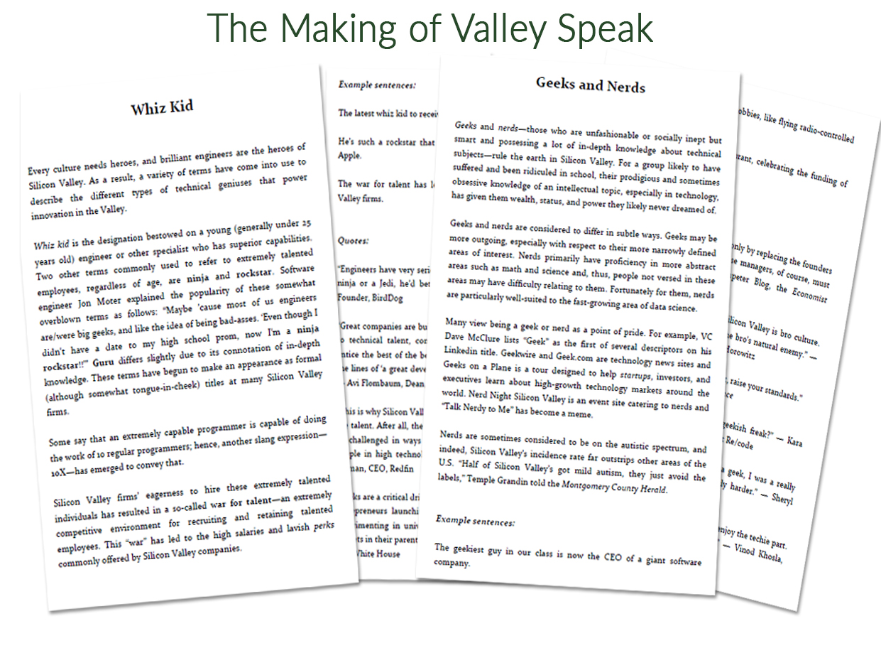 About the Book – Valley Speak
