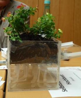 Pflanzen mit Fleece bewässern