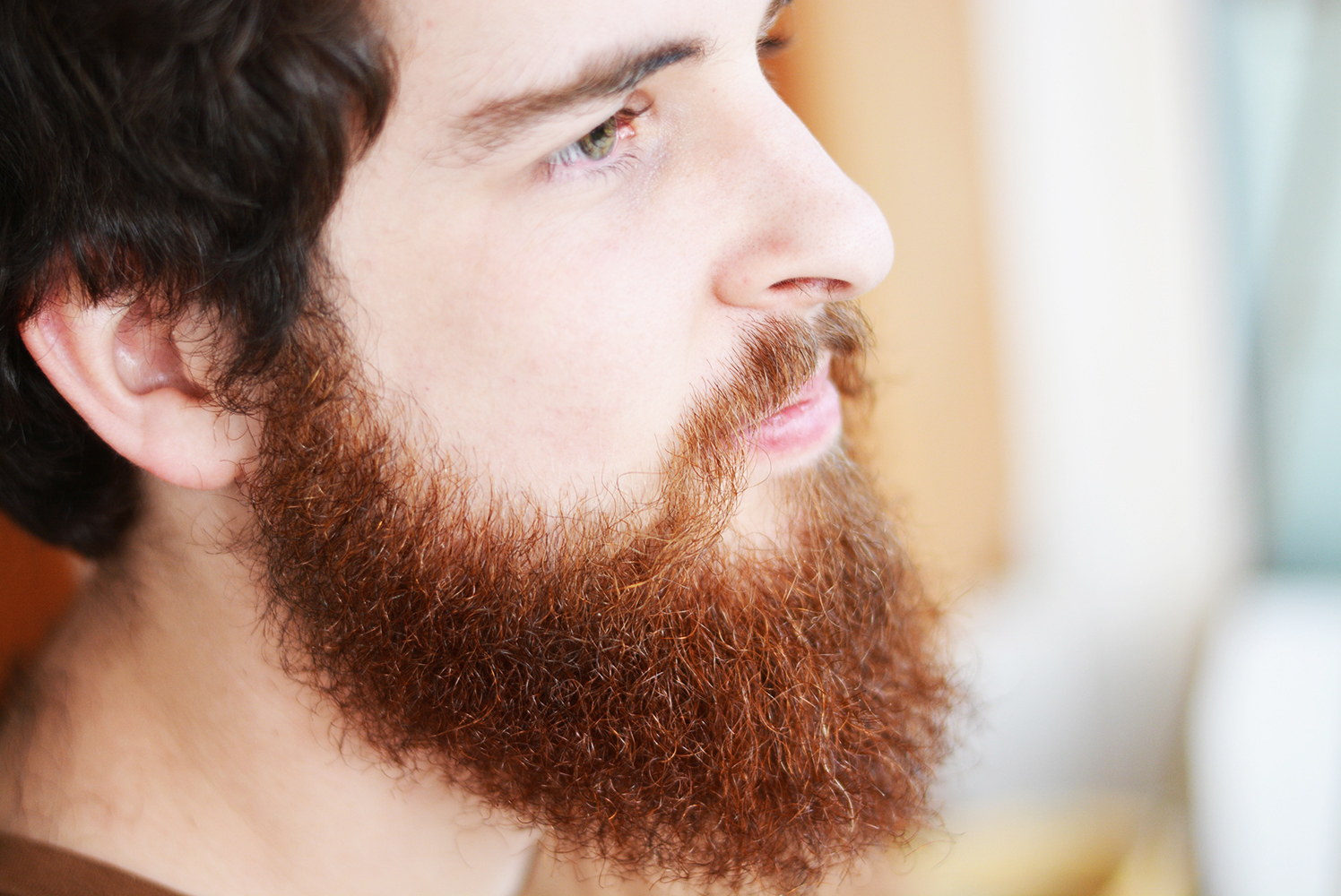 The Beard Buddy Review
