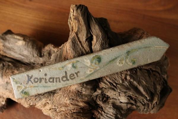 Kraeuterstecker Koriander