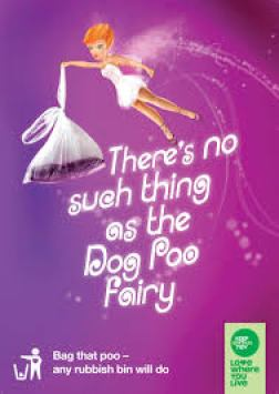 dog poo fairy poster