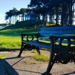 park bench on the seafront