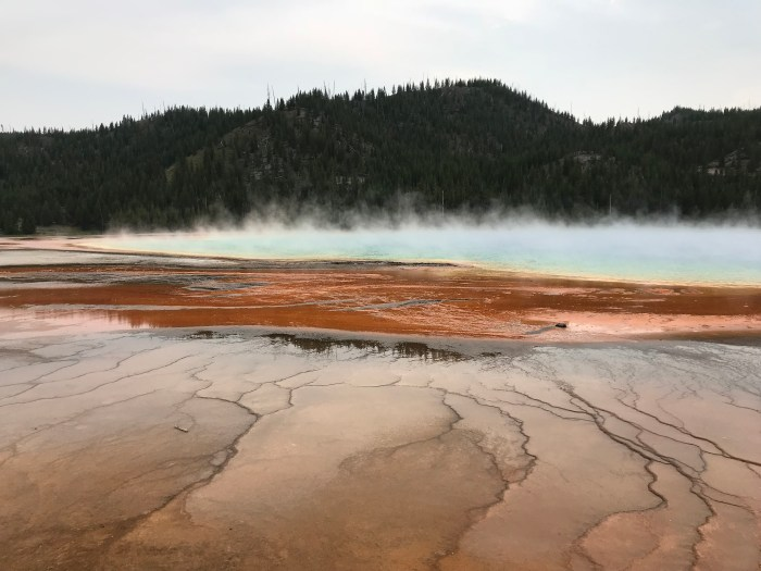 more yellowstone