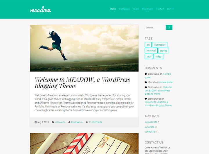 theme-wordpress-blog