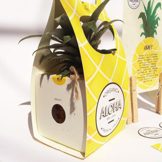 pinaple-packaging-creative