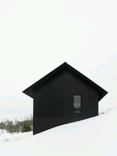 vivienda-madera-negra