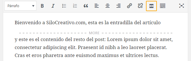 Añadir Etiqueta Leer Más en Panel de WordPress