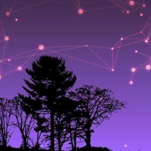Cielo estrellado interactivo en CodePen