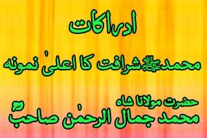 Muhammed Sharafat Ka Aala Namuna