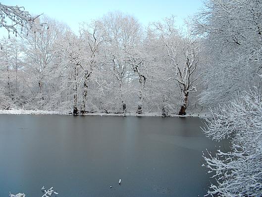 Winterwelt (2005)