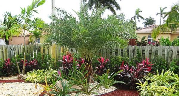 silvera landscaping