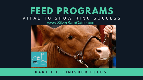 Feed Programs: Vital to Show Ring Success (Part III)