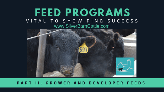 Feed Programs: Vital to Show Ring Success (Part II)