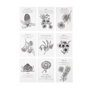 Gift Cards, Affirmations, Flower Essence Healing