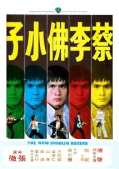 The New Shaolin Boxers (1976) | Silver Emulsion Film Reviews