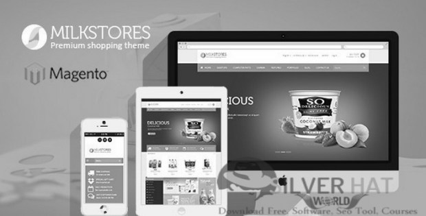 Responsive Store Magento Theme Download