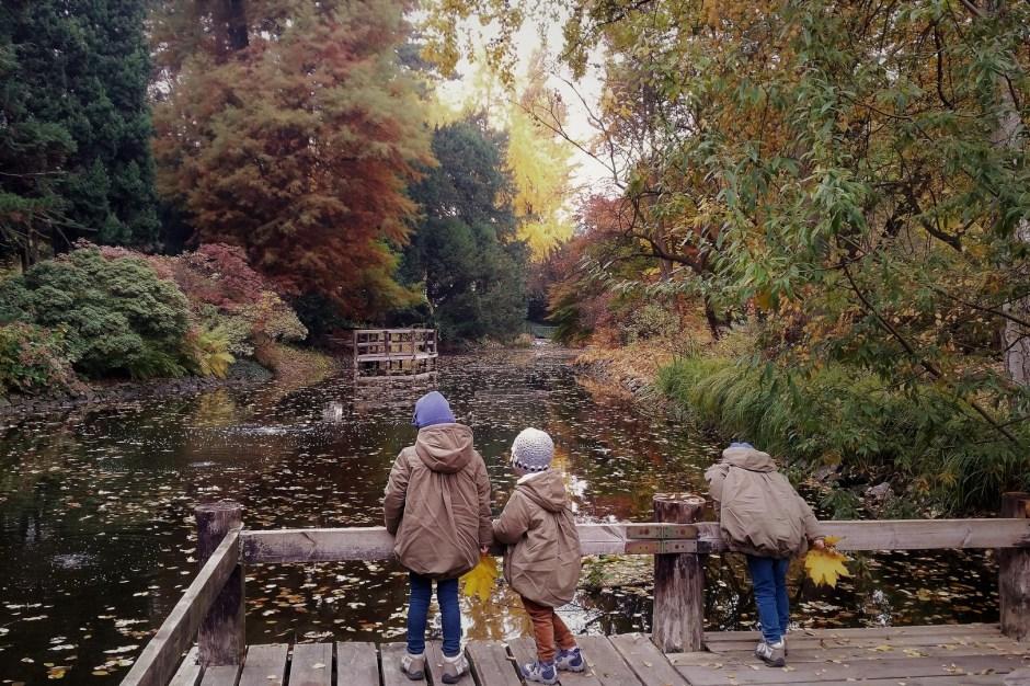 Wrocław z dziećmi ogród botaniczny jesienią