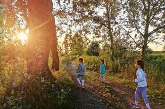 Geocaching – czyli o tym, jak zamienić nudny spacer w emocjonującą wyprawę po skarb