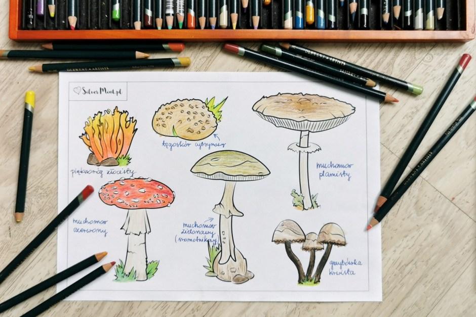 grzyby trujące - kolorowanka