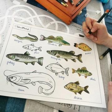 Na ryby! Nowe kolorowanki do pobrania