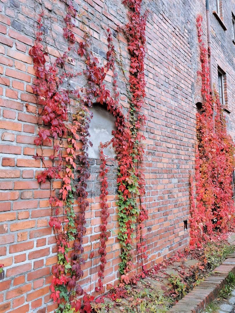 SilverMint blog Wrocław Muzeum Architektury