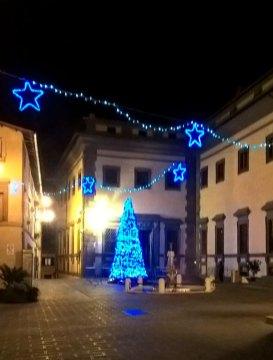 albero-di-Natale-06