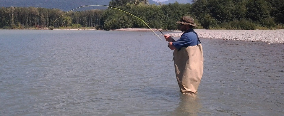 fly fishing guides, salmon fly fishing guides, pink salmon fly fishing, guided fly fishing, vancouver fly fishing