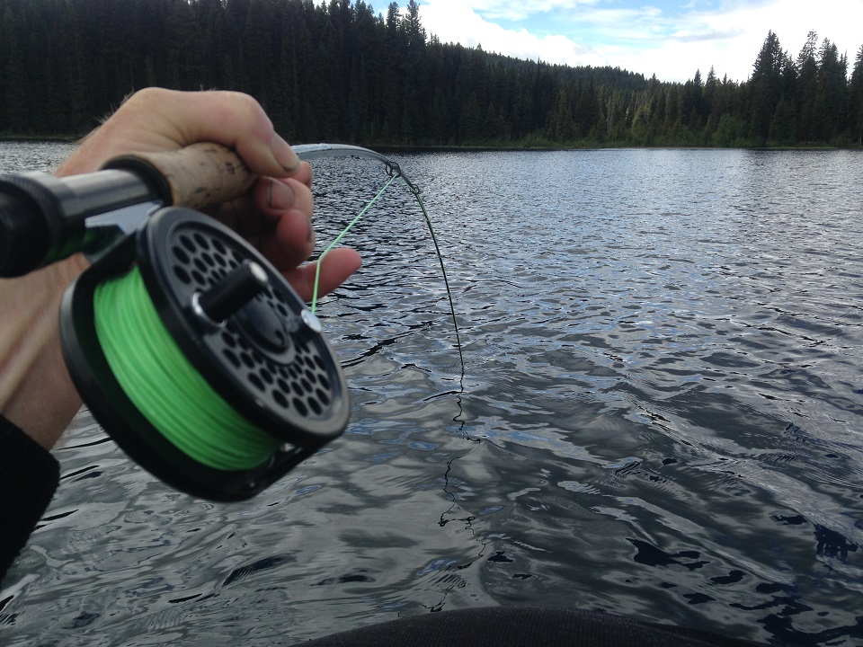 vancouver fly fishing, rainbow trout fly fishing, vancouver fishing, float tube fly fishing, bc lake fishing