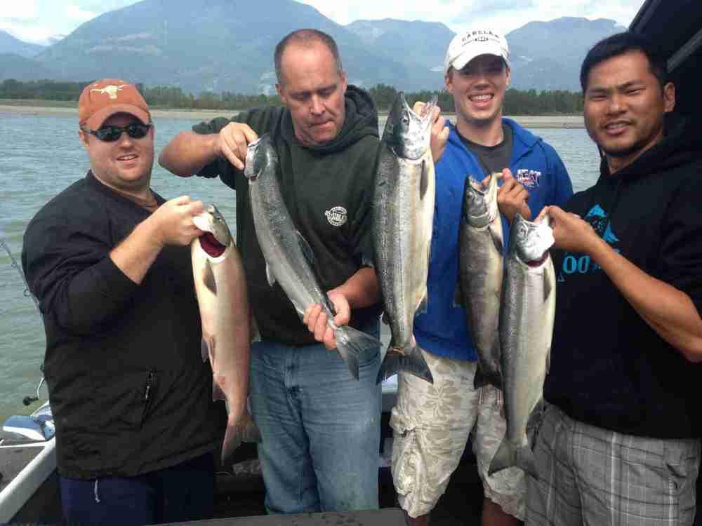 sockeye, sockeye salmon fishing, fraser river sockeye, sockeye charters, sockeye fishing report fraser river, sockeye salmon fishing charters, sockeye salmon fishing chilliwack
