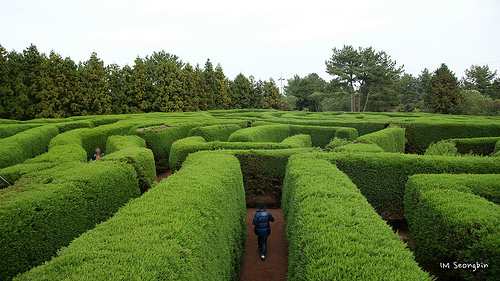 Maze photo courtesy of golbenge (골뱅이)