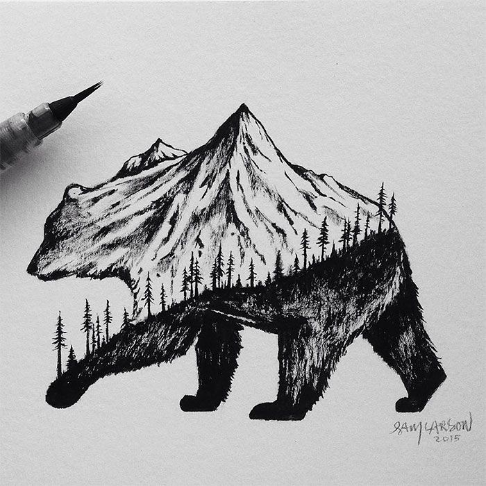Mountain bear by  Sam Larson!
