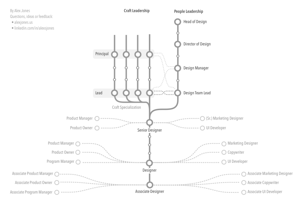 An outline of the branching career path