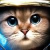 StarCraft Cat