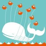 Obtener más seguidores en Twitter: 10 errores que debes evitar