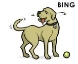 Bing: Bueno jugando a buscar, pero quizás no tan bueno como el otro perro.
