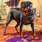 Cómo conseguir créditos en iFruit con Chop the Dog