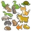 Humor gráfico - mascotas
